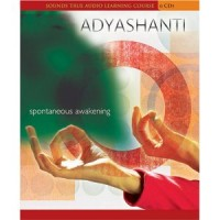 Adyashanti – Spontaneous Awakening, a full retreat on audio